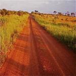 pq_929_camino-uganda.jpg