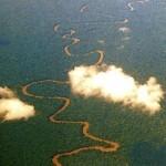 pq__Amazonia-OK-2.jpg