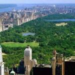 pq__New-York2.jpg