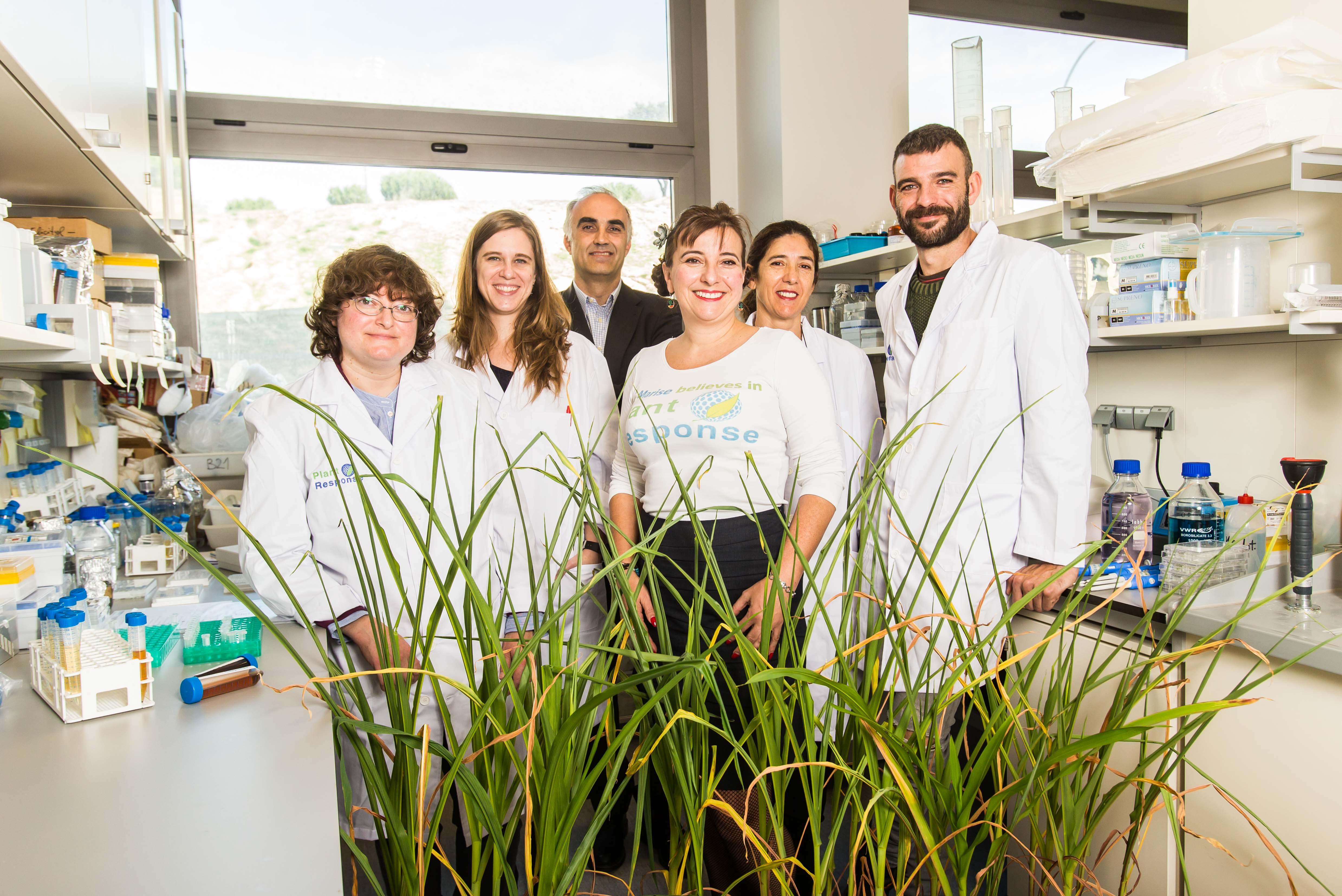 PlantResponse Biotech cierra una ronda de financiación de 5,7 millones de euros