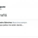 pedro-sanchez-paliza