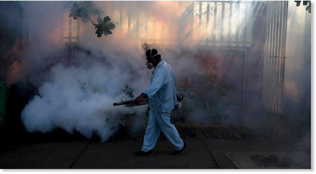 exterminador-mosquitos-2
